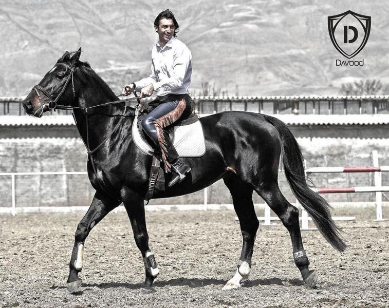 مهدی رحمتی سوار بر اسب زیبایش (عکس)