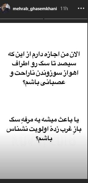 واکنش مهراب قاسمخانی به کشتن و سوزاندن سگها +عکس